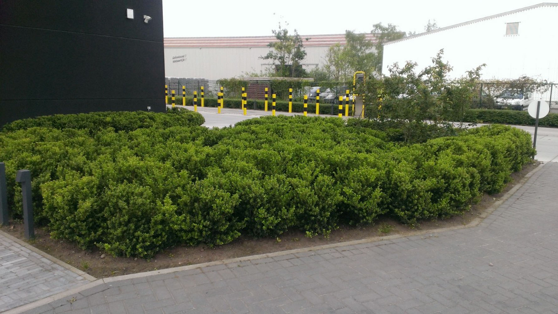 Bedrijfstuinen gezamenlijke tuinen voorbeeld van bedrijfstuin en gezamenlijke tuin - Bed dat gelederen ...